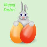 Easter bunny with eggs. Royalty Free Stock Photo