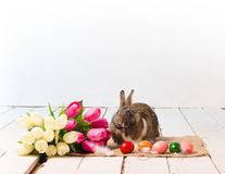 Easter bunny and eggs on wooden floor Royalty Free Stock Photos