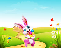 Easter  bunny  eggs  & wooden sign Royalty Free Stock Images