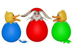 Easter bunny in eggshell, Easter chicken surprised Stock Photography