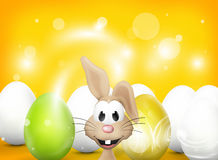 Easter Bunny Figure Stock Images
