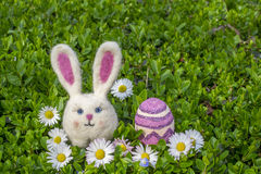 Easter bunny girl with easter egg and flowers on green bush. Easter bunny girl with easter egg and flowers on green bush Royalty Free Stock Images