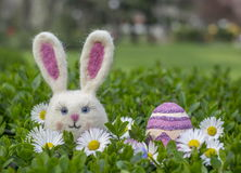 Easter bunny girl with easter egg and flowers on green bush. Easter bunny girl with easter egg and flowers on green bush Stock Photo