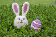 Easter bunny girl with easter egg on green bush.  Stock Photos