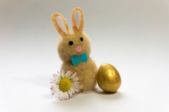 Easter Bunny. With golden egg and daisy Royalty Free Stock Photos