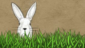 Easter bunny in gras - colored vintage sketch illustration Royalty Free Stock Photos