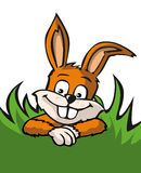 Easter bunny in grass Royalty Free Stock Photography