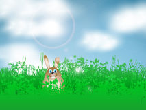 Easter bunny in grass Stock Photography