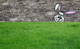 Easter bunny on grass Royalty Free Stock Image