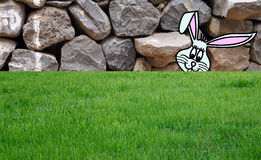 Easter bunny on grass Stock Photo
