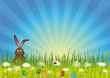 Easter bunny on green meadow. With easter eggs and flowers Stock Photo
