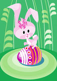 Easter bunny on the greene grass Royalty Free Stock Image