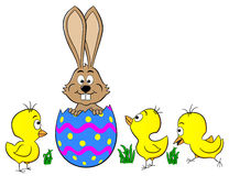 Easter bunny hatching from an egg Stock Photo