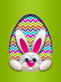 Easter bunny hidden in egg hollow Royalty Free Stock Photography