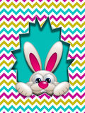 Easter bunny hidden in zigzag egg hollow Stock Images