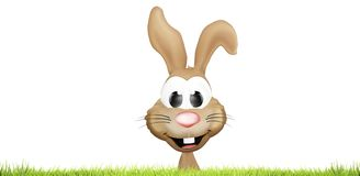 Easter bunny hiding behind green lawn green grass meadow blades. Of grass 3d Stock Photos