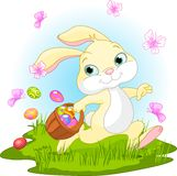 Easter Bunny Hiding Eggs. Illustration of cute Easter Bunny Hiding Eggs Royalty Free Stock Images