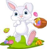 Easter. Bunny Hiding Eggs Stock Photo