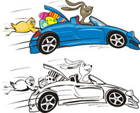 Easter bunny and his crazy convertible Stock Photo