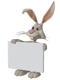 Easter bunny holding a blank sign Royalty Free Stock Photos