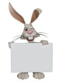 Easter bunny holding a blank sign Stock Photo