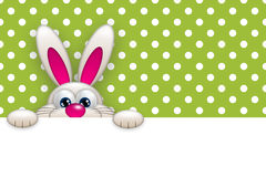Easter bunny holding empty banner over green Stock Images