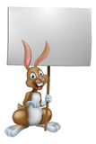 Easter Bunny Holding Sign Royalty Free Stock Images