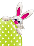 Easter bunny holding spring egg with place for text Stock Images