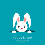 Easter Bunny in hole. Easter Bunny pop out of the hole. Vector illustration. Blue background with Easter funny rabbit Royalty Free Stock Photo