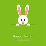 Easter Bunny in hole. Easter Bunny pop out of the hole. Vector illustration. Green background with Easter funny rabbit Royalty Free Stock Images