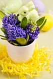Easter bunny and hyacinths Royalty Free Stock Images