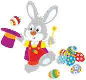 Easter Bunny illusionist Royalty Free Stock Photos
