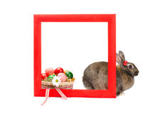 Easter bunny inside painted red wooden frame Royalty Free Stock Photos