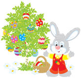 Easter Bunny. Little rabbit near a tree with colorfully painted Easter eggs Royalty Free Stock Images