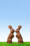 Easter Bunny Love Stock Image