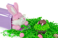 Easter bunny in mailbox with cupcake Stock Photo