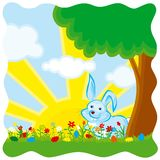 Easter Bunny on the meadow. Royalty Free Stock Photo