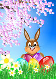 Easter bunny on meadow Stock Image
