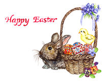 Easter bunny near basket with eggs with traditional painting, chick and spring flowers: pansies and violets, Happy Easter Royalty Free Stock Images