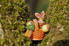 Easter Bunny in an Orange Basket in a Tree stock images