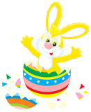 Easter Bunny and painted egg. Vector clip-art of Easter Bunny that hatched out from a colorful painted egg like a chick Royalty Free Stock Photography