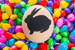 Easter bunny painted on egg Royalty Free Stock Image