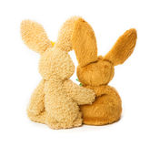 Easter Bunny, pair stock images