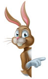 Easter Bunny Pointing Sideways Royalty Free Stock Image