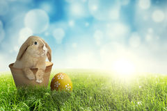 Easter bunny in the pot on grass. Picture of Easter bunny in the pot with Easter egg on green grass, shot with a blue light glitter background Royalty Free Stock Photo