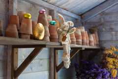 Easter bunny in potting shed. Easter rabbit in potting shed with chocolate eggs Stock Image
