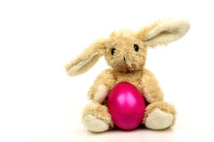 Easter bunny with a purple egg Royalty Free Stock Photo