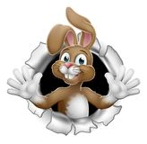 Easter Bunny Rabbit Breaking Through Background royalty free stock photos