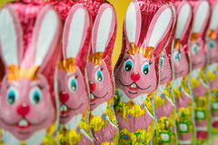 Easter Bunny or Rabbit Royalty Free Stock Photo