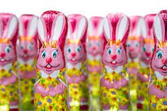 Easter Bunny or Rabbit Royalty Free Stock Photos